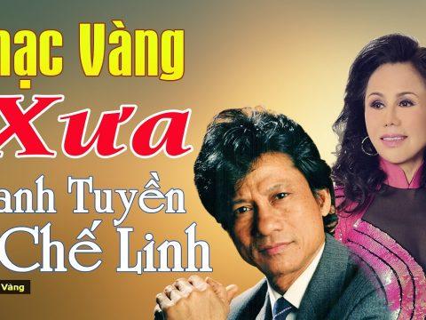 Chế Linh và Thanh Tuyền lần đầu làm liveshow chung tại Hà Nội